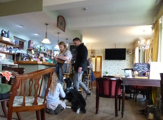 Great Bardfield, UK: It's OK for dogs and children in the bar at the The Vine