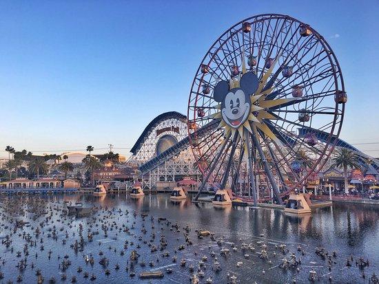 Disney's California Adventure: photo0.jpg