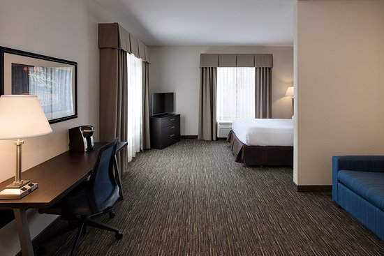 Holiday Inn Express Hotel & Suites Andover/East Wichita: Single Queen Suite