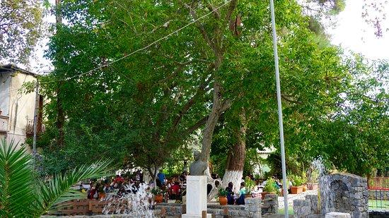 Armeni, Yunani: Sunday lunch under the walnut tree
