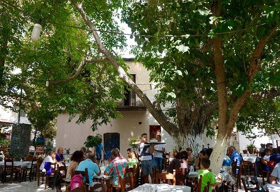 Armeni, Yunani: Good service thanks to hard-working waiters!