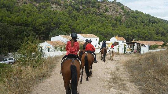 El Burgo, España: La Rejertilla