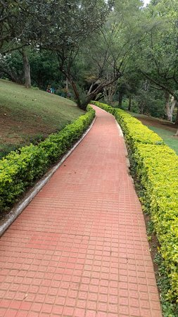 Coonoor, India: The Road to eternity