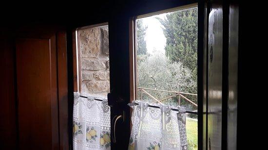 Чивителла-ин-Валь-ди-Кьяна, Италия: Agriturismo Fattoria di Gratena