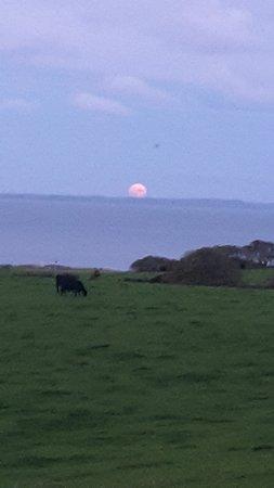 Drummore, UK: Pale moon rising