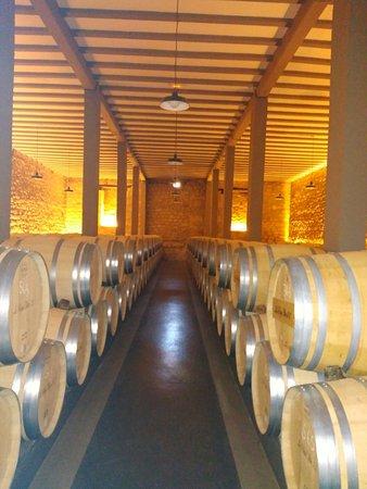 Haro, Espagne : Haciendo los reservas