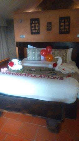 Национальный парк Моле, Гана: Zaina Lodge wishing us a Happy anniversary