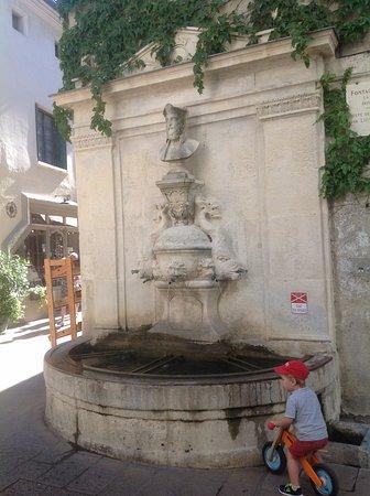 Saint-Remy-de-Provence, Γαλλία: Скромный фонтан.