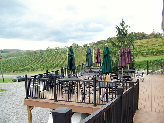 Middleburg, Pensilvania: The patio and view of some of the vineyard.