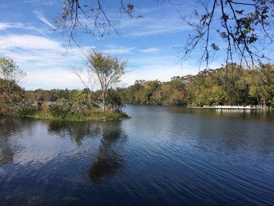 De Leon Springs, FL: photo3.jpg