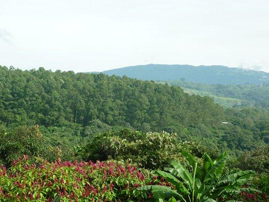 Vista Linda Montaña: Blick auf die Natur