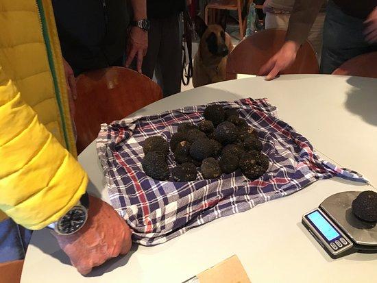 Vaud, İsviçre: Dégustation de truffes blanche et noire avec l'enoteca Capponi