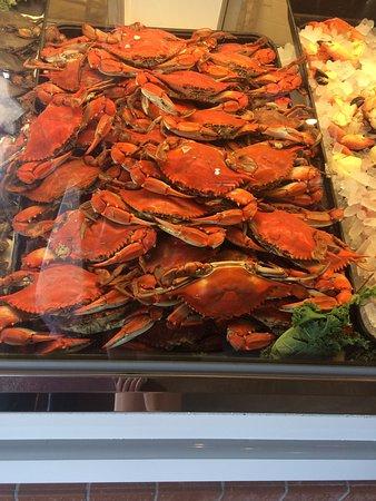 Wesley Chapel, FL: Seafood Case