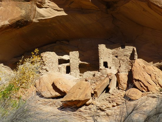 Crow Canyon Archaeological Center : River House on the San Juan River in Utah