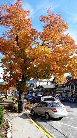 Leavenworth, WA: Fall Colors were beautiful along Front Street