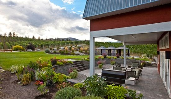 Okanagan Falls, Canada: Beautiful vineyard view from our tasting room patio!