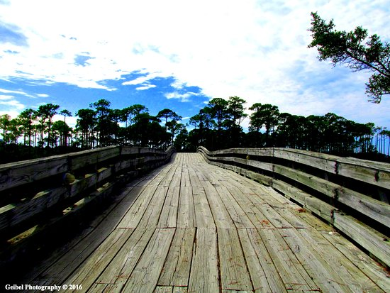 The wooden walking bridge across from the mainland to Jolee Island Nature Park.