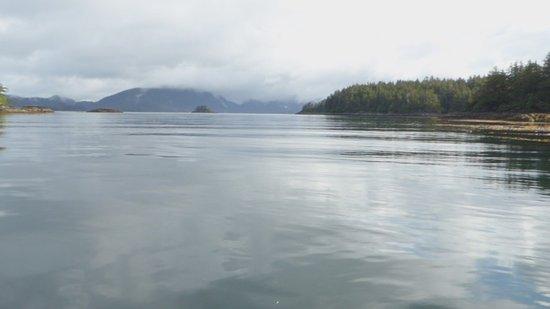 Sitka, AK: Gallant Adventures
