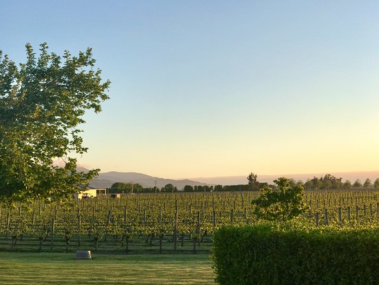 Marlborough Vintners Hotel Heritage Boutique Collection: Sunrise views