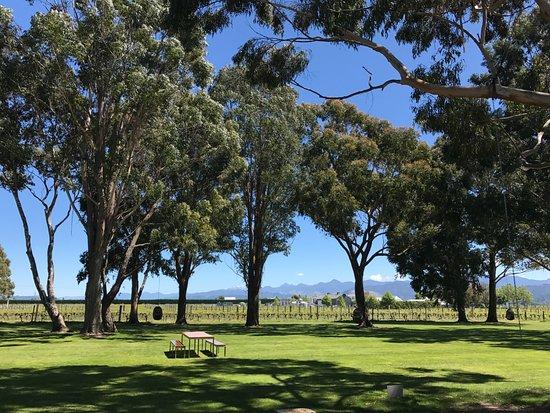 Rapaura, Nuova Zelanda: The lawns