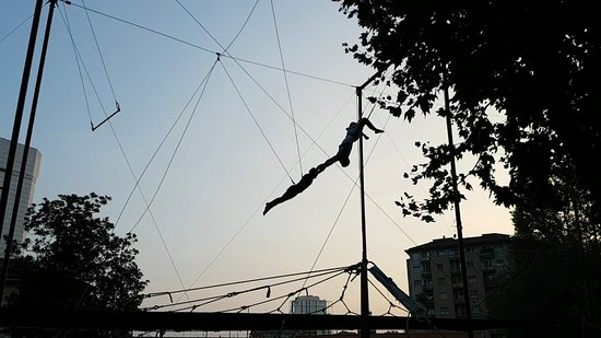 Befly Flying Trapeze