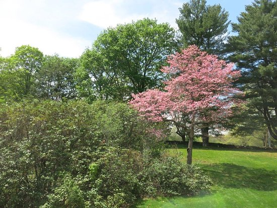 Concord, MA: Scenery