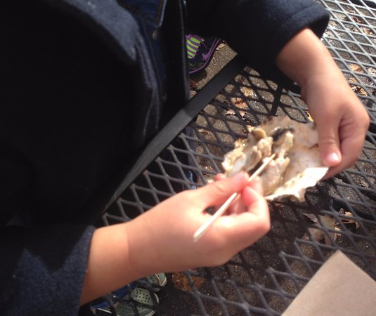 Blaine, WA: The kids really liked the Savoury Oysters