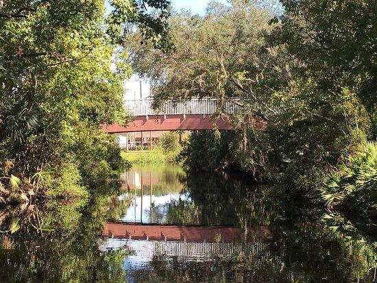 Homosassa Springs, FL: photo5.jpg
