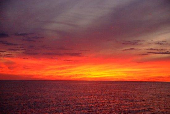Venice, FL: Gulf of Mexico sunset...
