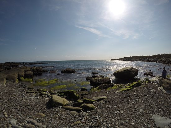 Middletown, RI: Sachuest Point