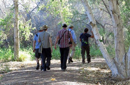 Yuma, AZ: A shady spot along the Cornfield Nature Trail.