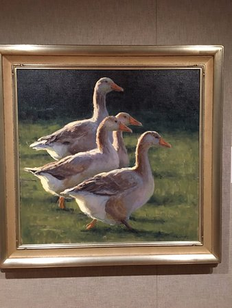Wausau, WI: These four geese caught my eye immediately! My favorite!