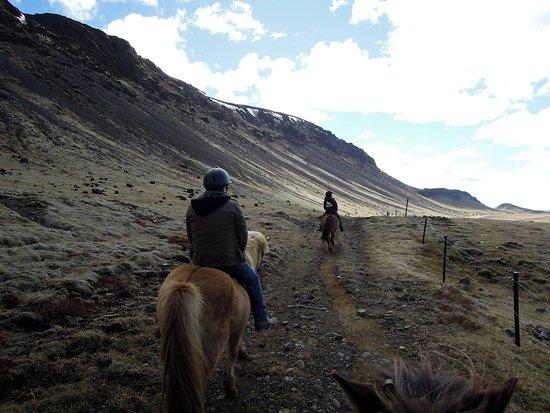 Selfoss, Islandia: Beginners ride