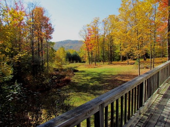 Newfane, VT: View of Fall Color from main floor deck