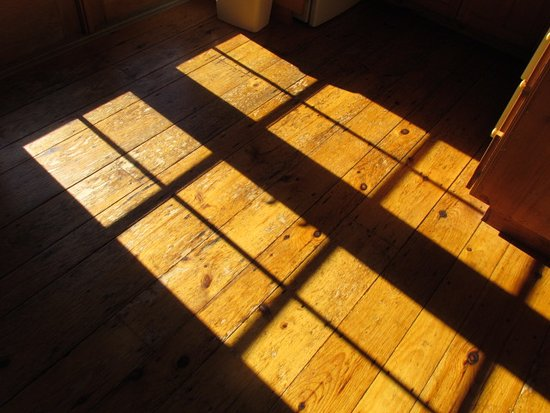 Newfane, VT: Light on beautiful pine floors