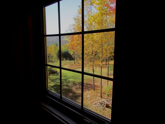 Newfane, VT: Second View through window of fall color