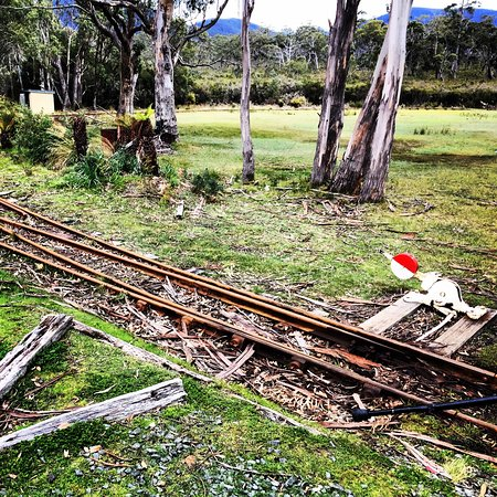 Tasmanien, Australien: Part of the track