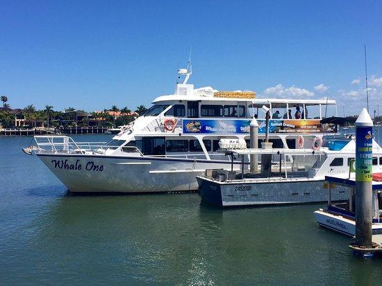 Mooloolaba, Australia: One of there boats