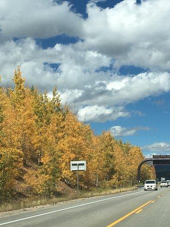The Colorado Trail: photo0.jpg
