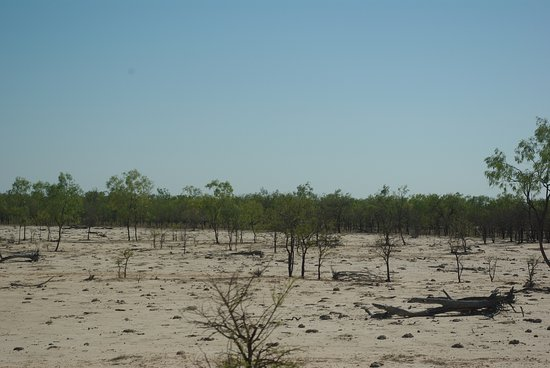 Normanton, Australien: Dry countryside