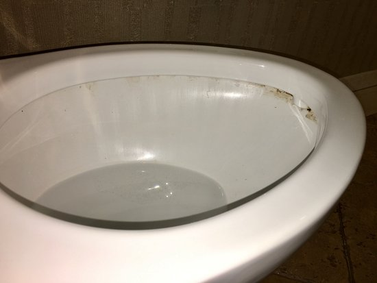 Madison Hotel: Smelly, filthy toilet.