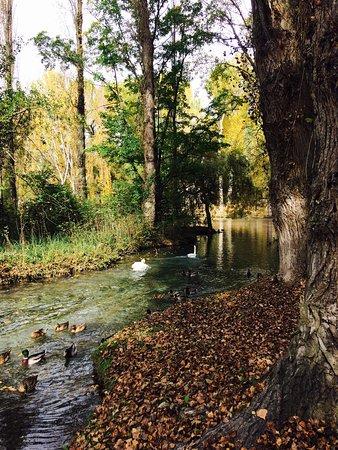 Campello sul Clitunno, Italia: Posto incantevole con i colorì dell'autunno peccato che non venga migliorato !!!!
