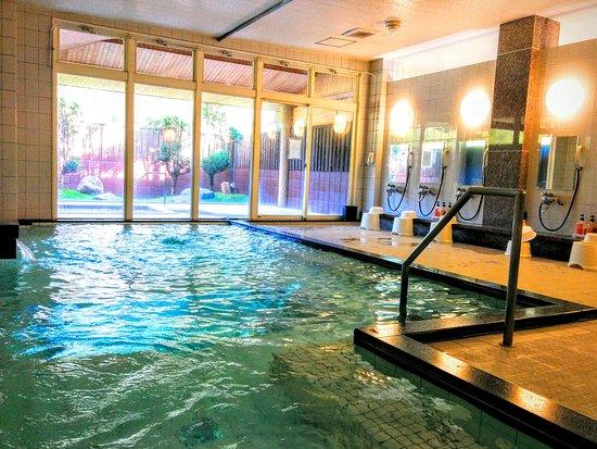 Hotel Monte Rosa : 大浴場