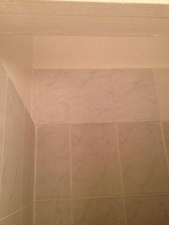 Hotel Albatros : Rafistolage de carrelage dans la douche