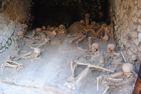 Ercolano, Italie : Some of the c 300 skeletons found in the boathouses along the former shoreline below the 'Suburb