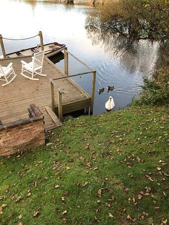 Forton, UK: photo0.jpg
