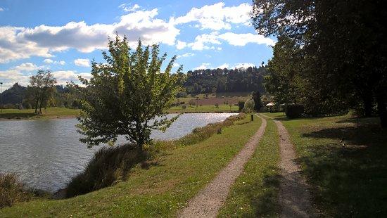 Berghaupten, Deutschland: Waldsee - sehr schön zum Baden