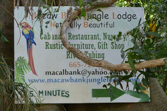 Foto de Macaw Bank Jungle Lodge