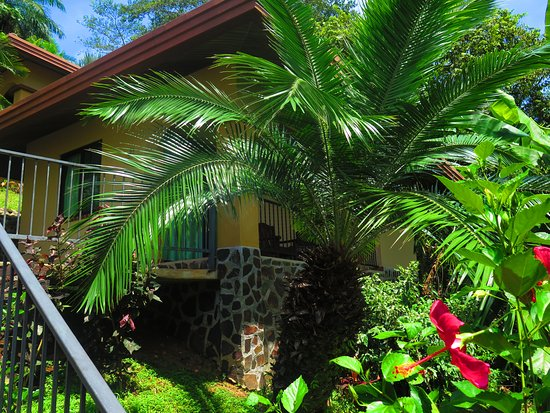 Boca Chica, بنما: Our Ocean View Bungalows are scalloped along a hillside with stunning views of the Gulf of Chiri