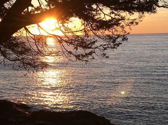 Perkins Cove Foto